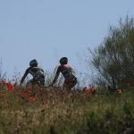 desafio_buda_2011_07