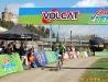 volcat_2010_2_004