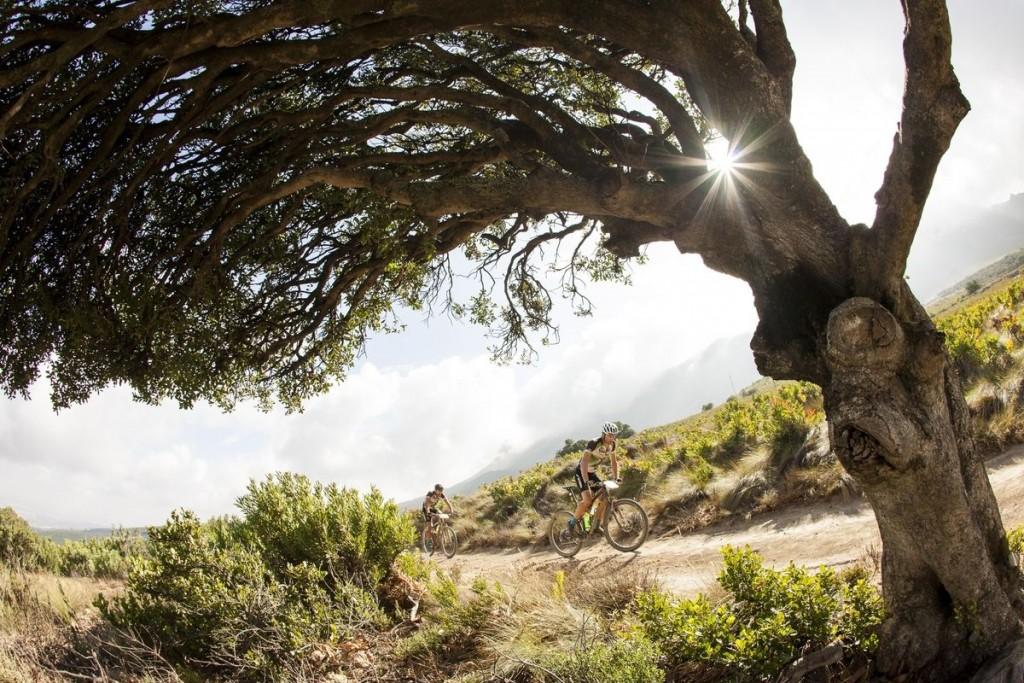 A partir de hoy, la Absa Cape Epic es todo bajada para los que buscan ser finishers de la carrera. Foto Sam Clark/Cape Epic/SPORTZPICS