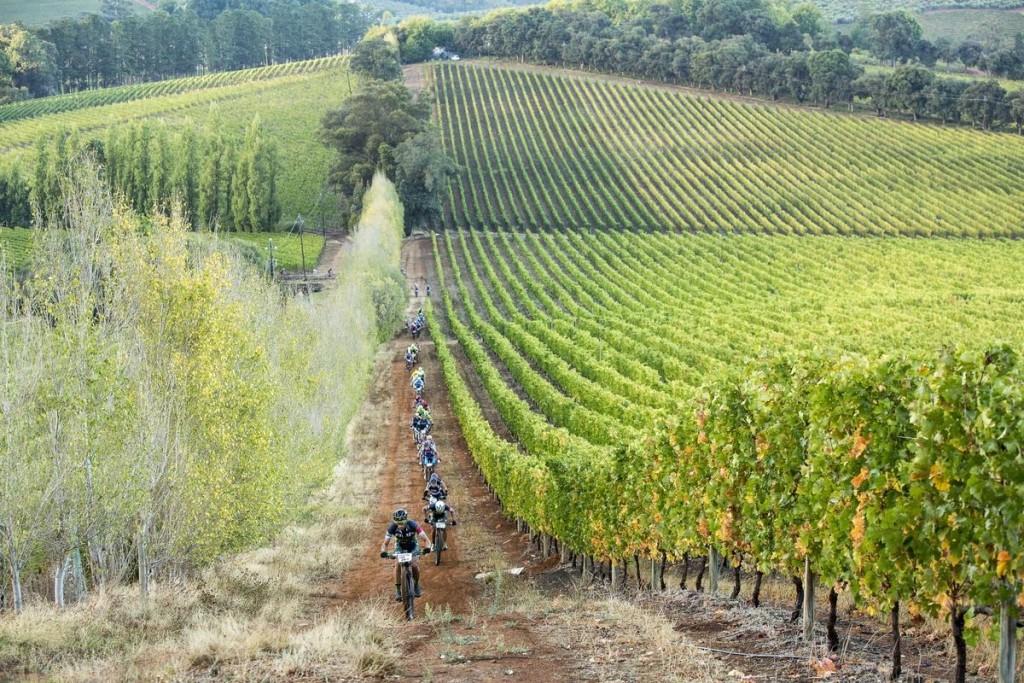 Sin olvidar las zonas de viñas. Foto Sam Clark/Cape Epic/SPORTZPICS