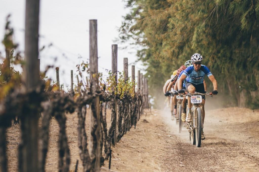 """Y el """"obligatorio"""" tramo por viñas. Foto Ewald Sadie/Cape Epic/SPORTZPICS"""