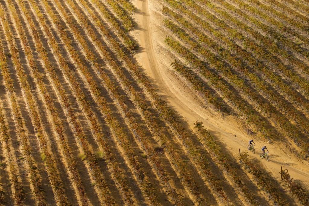 Con paisajes sello de identidad de la carrera. Foto Gary Perkin/Cape Epic/SPORTZPICS