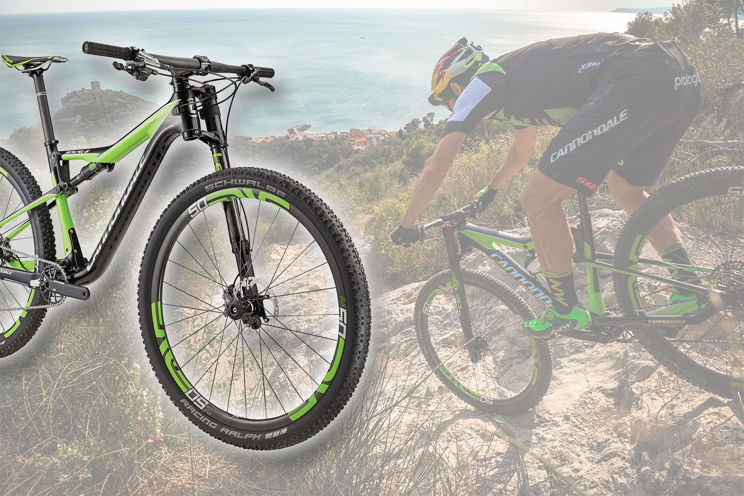 cannondale_scalpel
