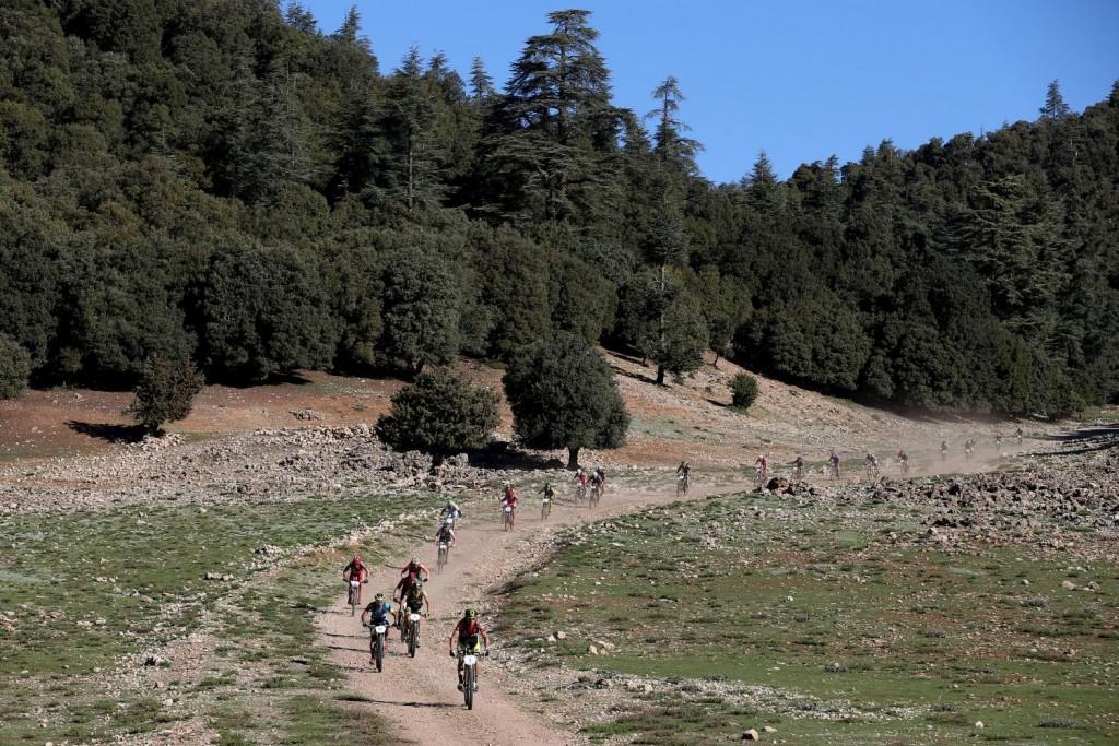 Árboles y bosques, los echarán de menos en unas horas cuando la carrera se traslade a su escenario habitual, el desierto.