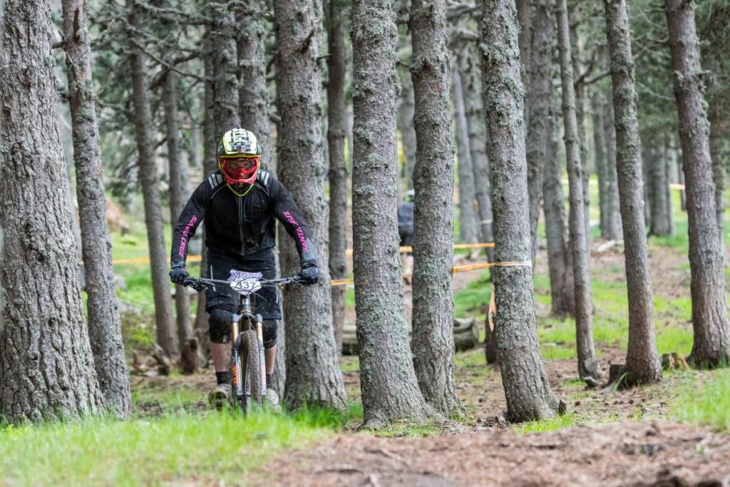 Tramos abiertos y senderos entre árboles. Tienes de todo