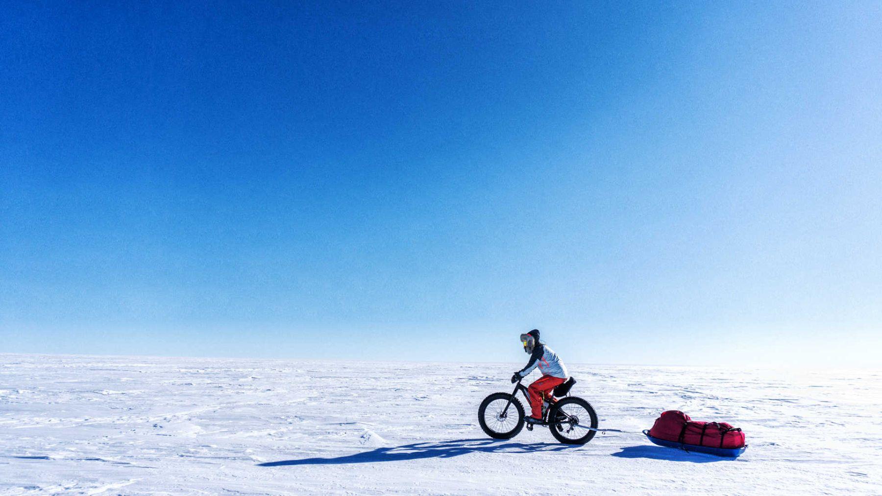 La soledad del polo sur
