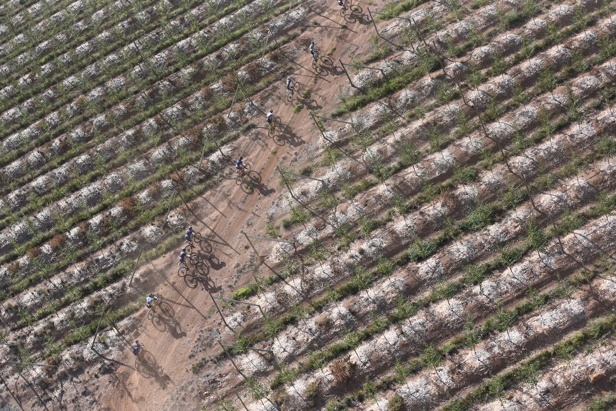 No podían faltar los viñedos o plantaciones de manzanas. Si no no sería la Cape Epic. Foto Zoon Cronje/Cape Epic/SPORTZPICS