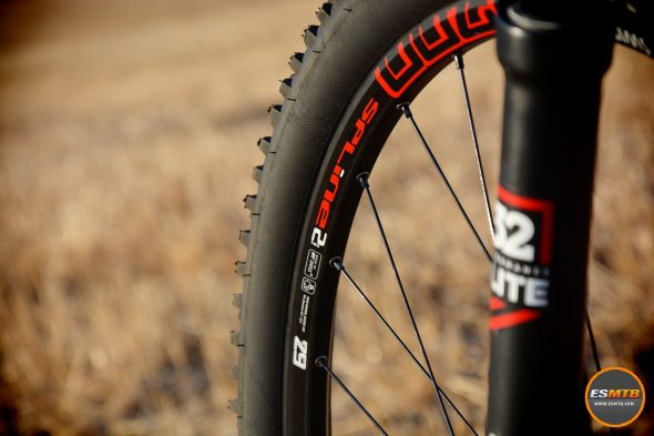 Detalle de las ruedas DT-Swiss