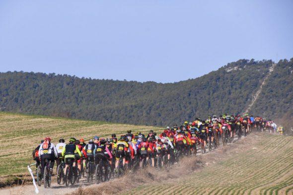 650 bikers
