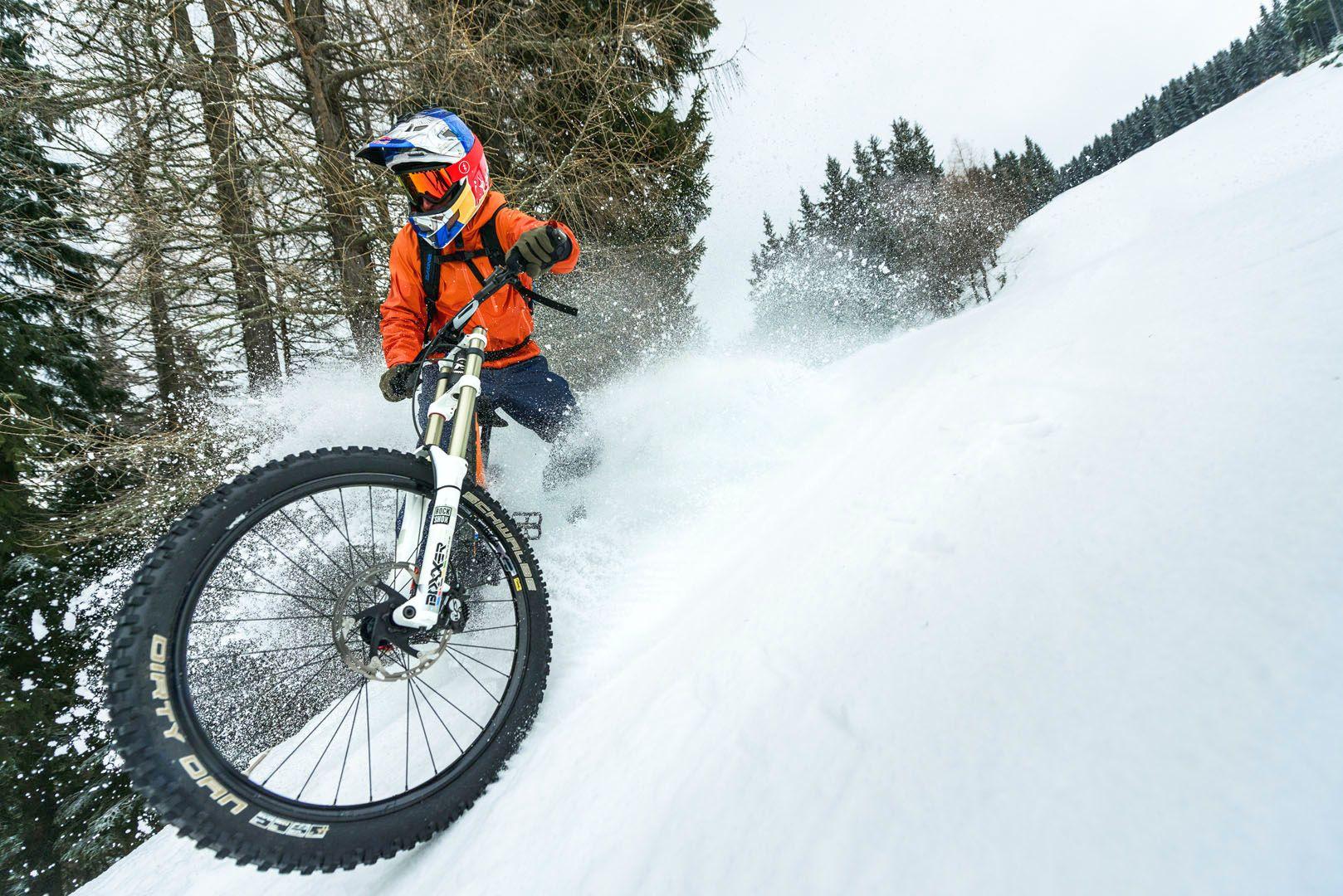 Alpine Snow Bike