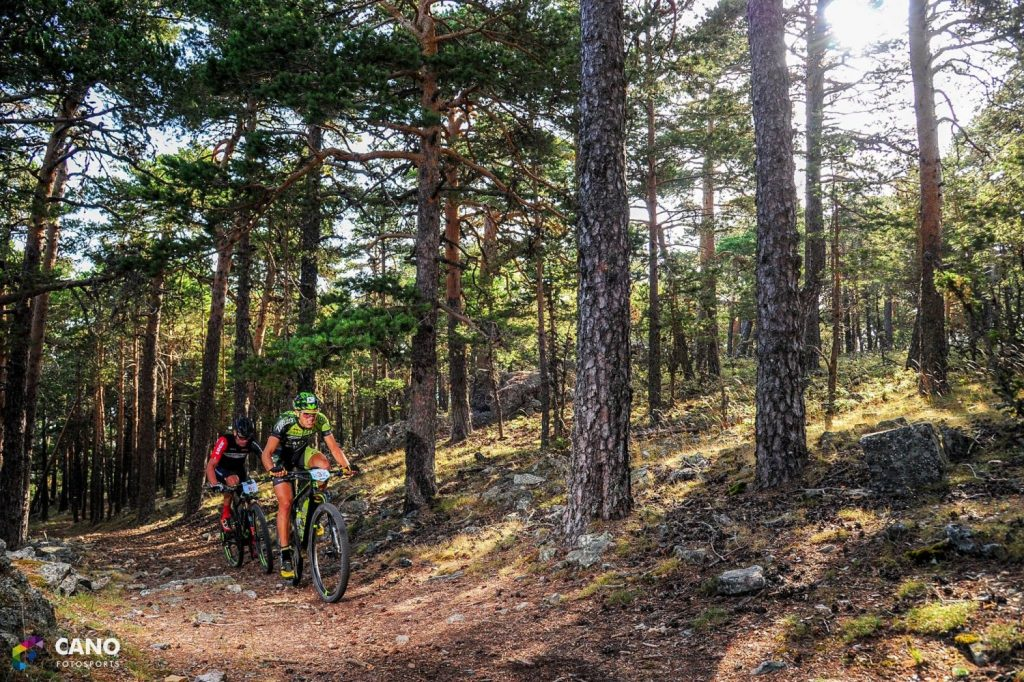 Berrea Bike Race